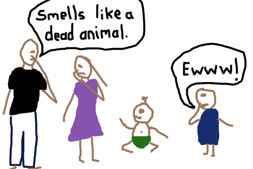Animals-in-diapers2